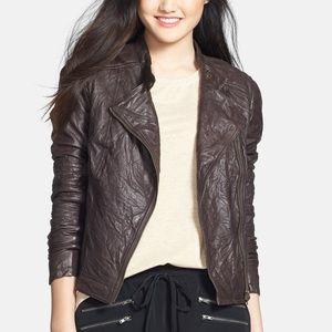 Caslon Rumpled Genuine Brown Leather Moto Jacket
